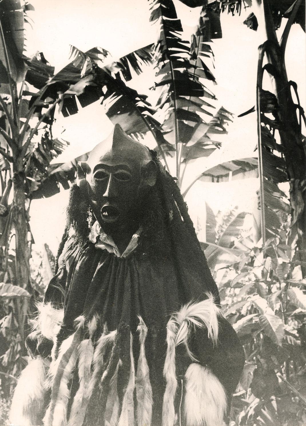 Kun'gan Mask, Bamileke, Cameroon, Field Photo with full mask robe under palm trees.