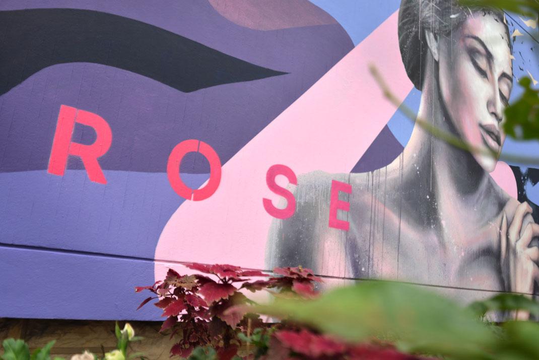 octobre rose campagne de lutte contre le cancer du sein fresque murale streetart savoie hopital aix-les-bains chambéry rhones-alpes auvergnes peinture murale femmes streetart graffiti art