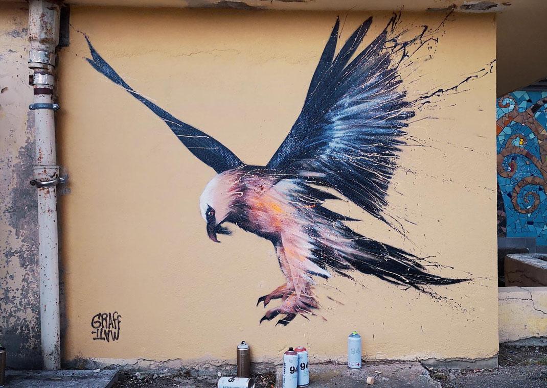 art mural peinture décoration murale mur intérieur extérieur chambéry savoie artiste rhones alpes graffeur graffiti art streetart lyon suisse genève france artiste peintre en savoie