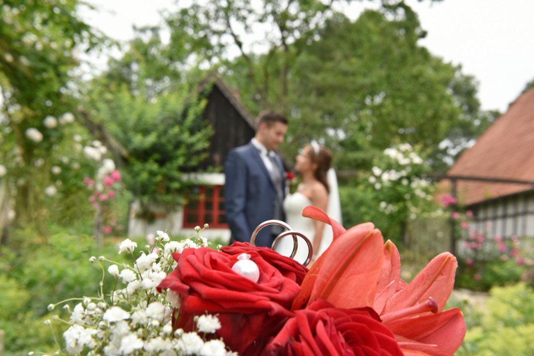 Location für Hochzeitsfotos mit Hund in OWL