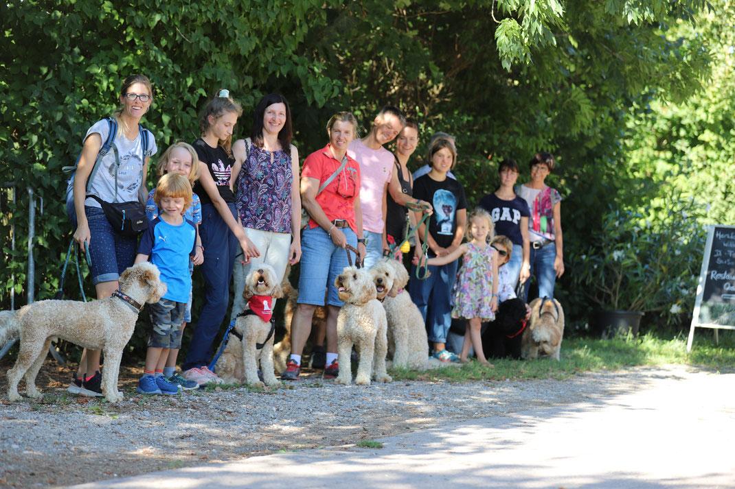 Cobberli Familien mit Junghunden aus Wurf Olten 😍😍😍