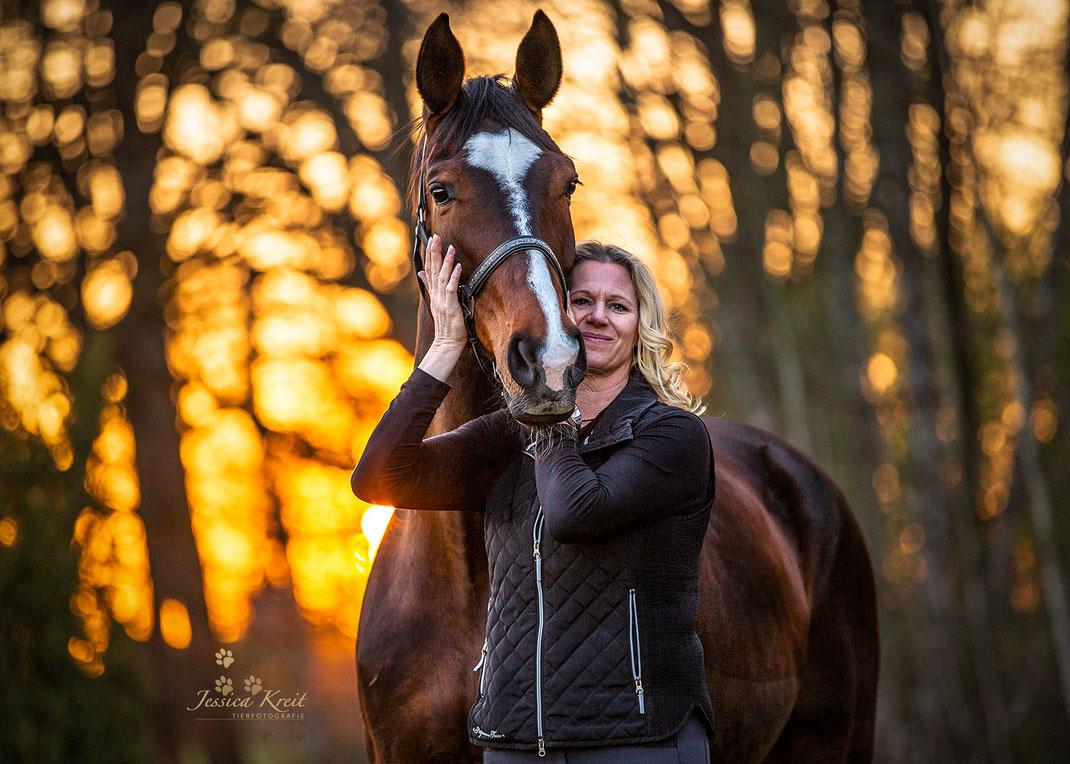 Pferdefotografie  Pferd mit Besitzerin im Sonnenuntergang