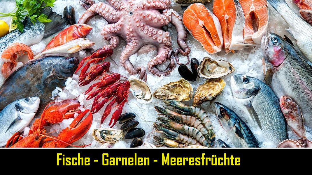 Fische, Garnelen, Tilapia, Makrele, Scubia, Melussa, Seehecht, Pangasius,