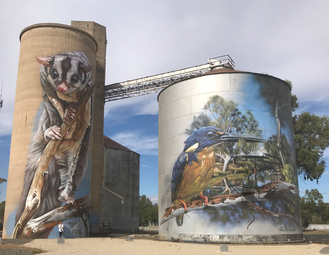 Silo Art in Rochester