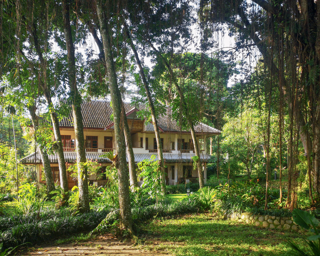 Nebengebäude der Öko-Lodge in Bukit Lawang