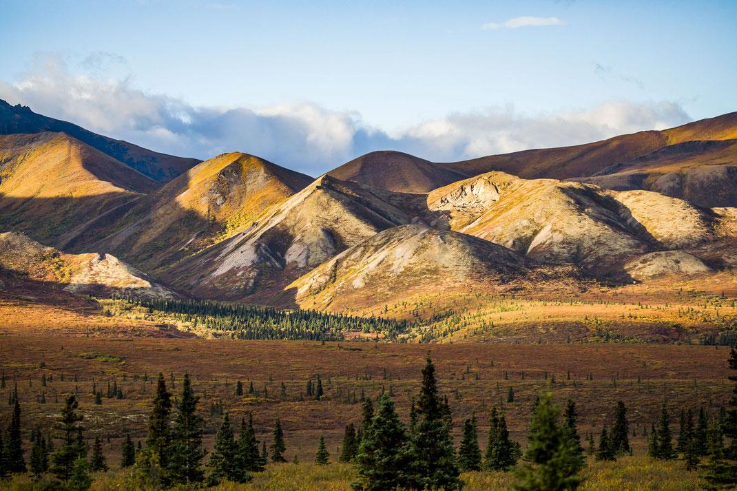 Berge im Licht - High Alaska Range im Denali Nationalpark