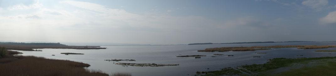 Der See Tåkern in der Nähe von Vadstena