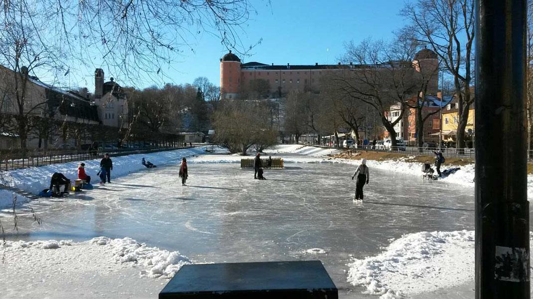 Schlittschuhläufer vor dem Schloss in Uppsala