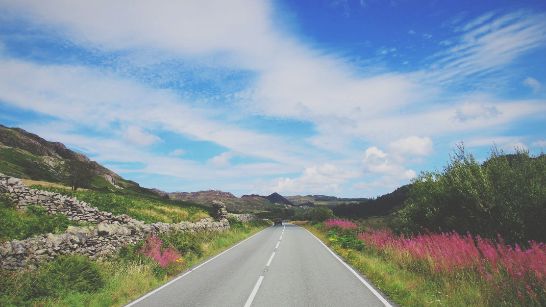 bigousteppes snowdonia paysage route camion ciel fleurs paysage