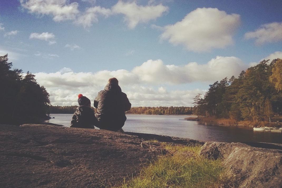 parc bigousteppes lac suède forêt automne