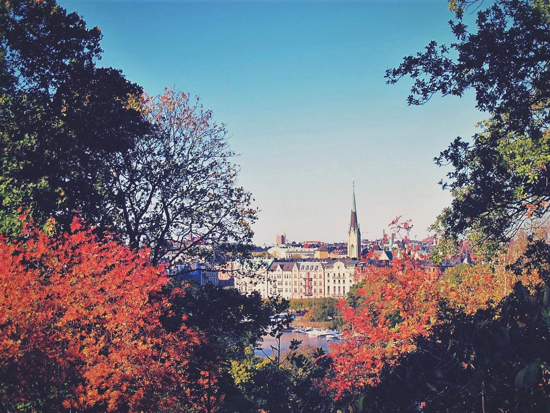 bigousteppes suède stockholm parc skansen vue capitale automne arbres ville