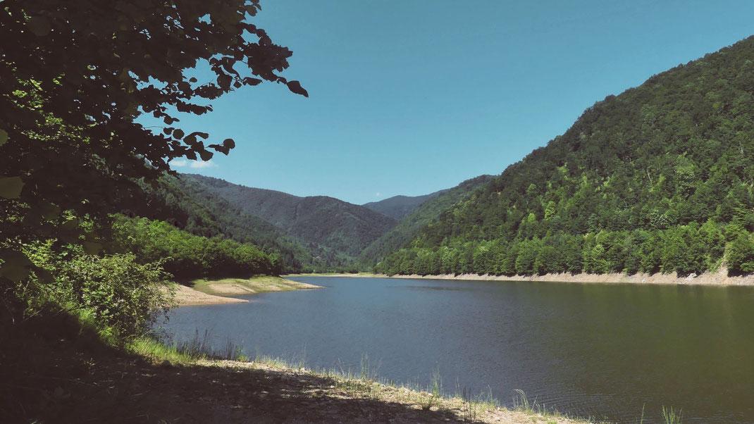 lac roumanie bigousteppes foret