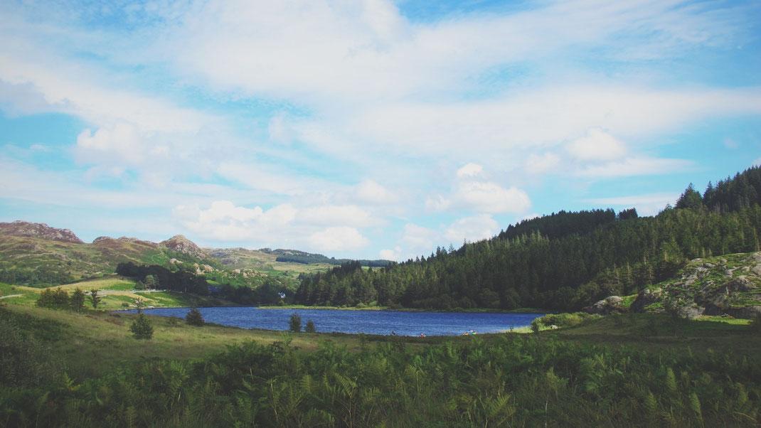 bigousteppes snowdonia lac foret paysage