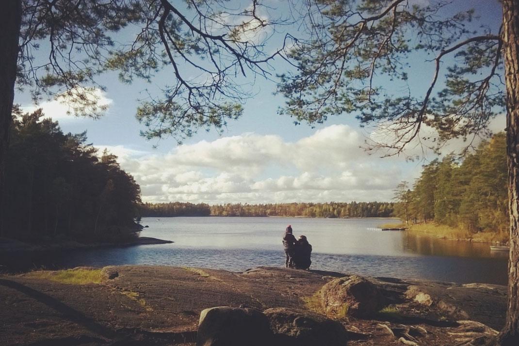 parc forêt suède bigousteppes lac arbres