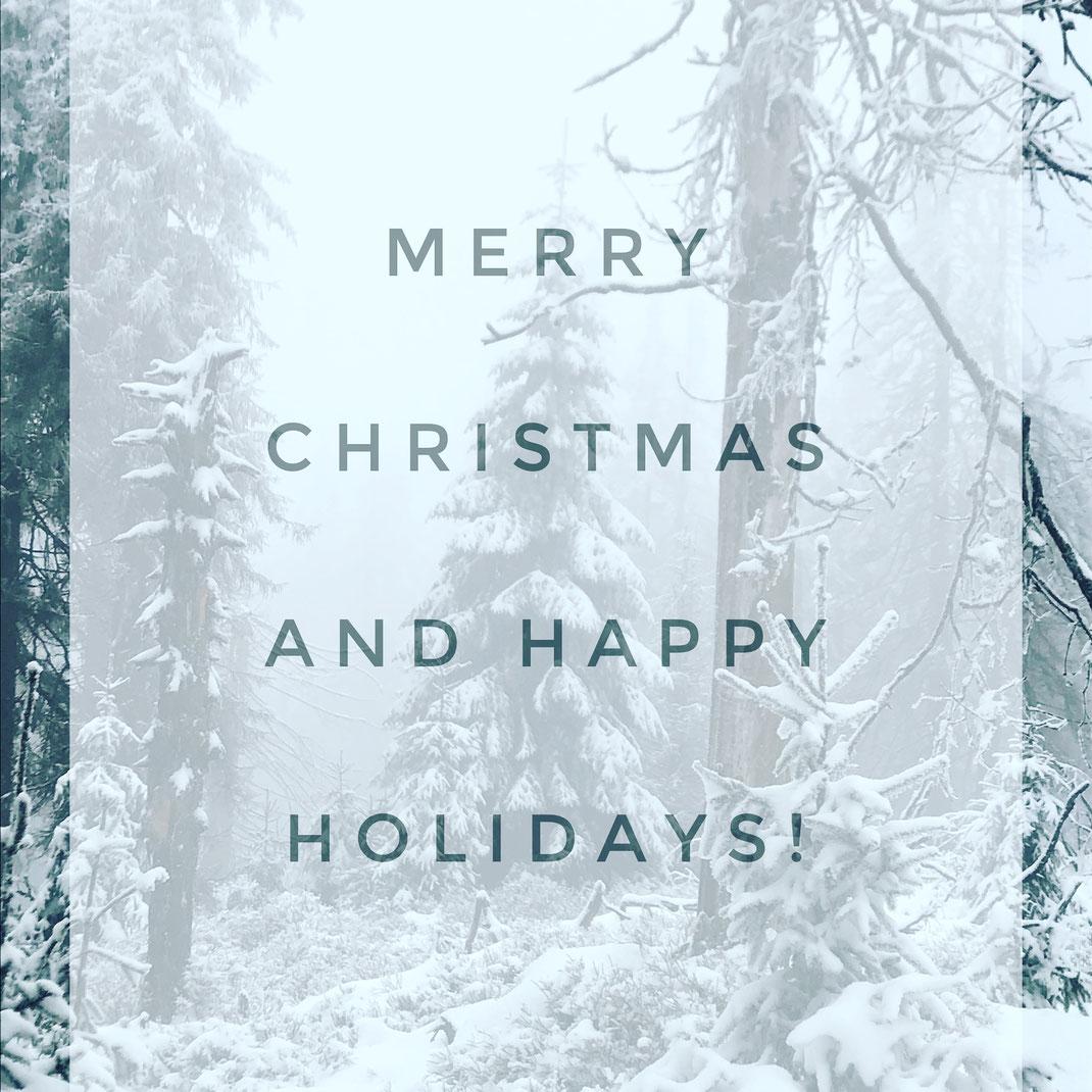 Merry Christmas, happy holidays, fröhliche Weihnachten, Weihnachten, Christmas greetings, winter wonderland, winter, snow, pine, forest, Wald, Schnee, Winterwunderland, Feiertage, Weihnachtsgrüße, season's greetings