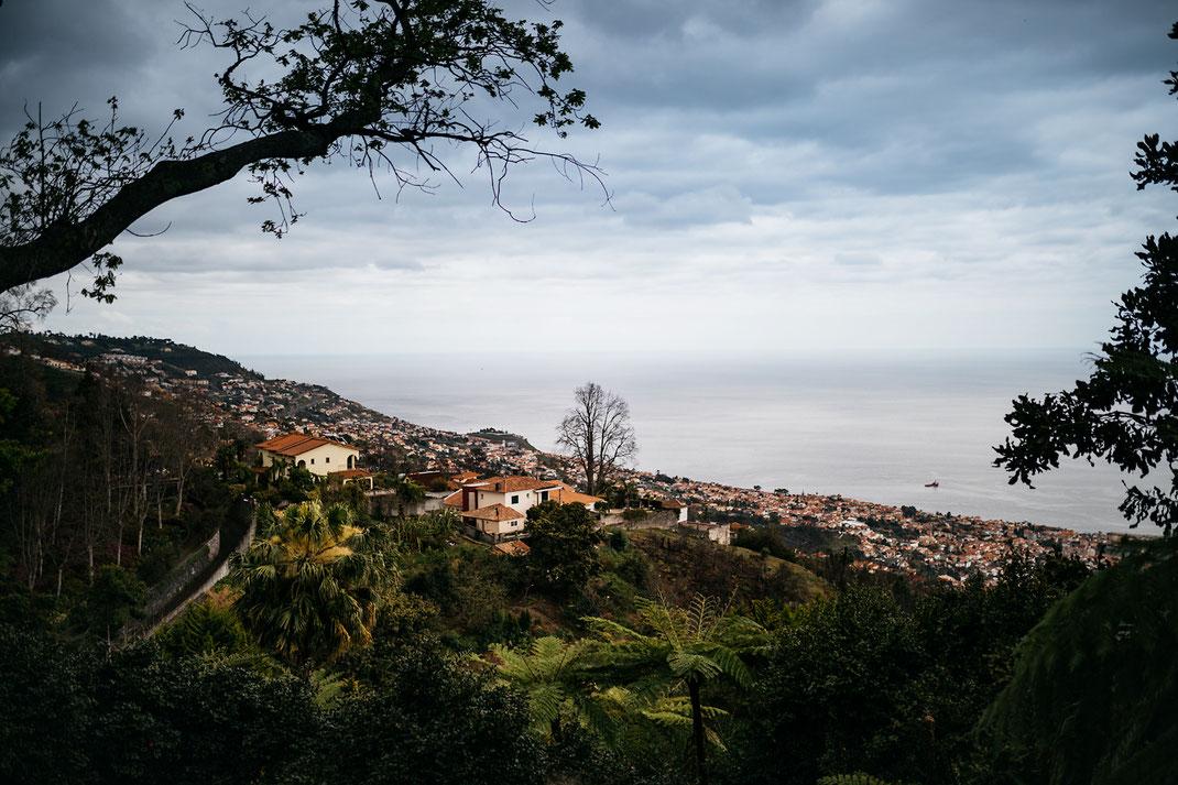 Madeira Funchal Blick Botanischer Garten