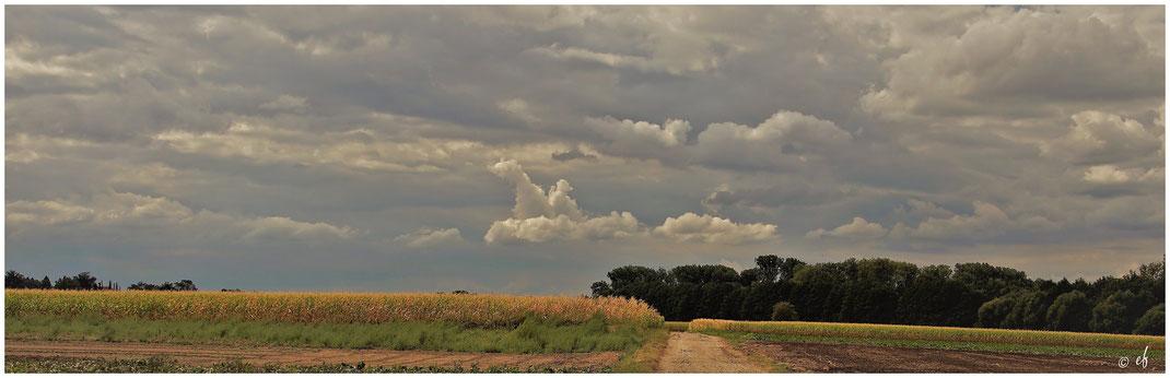 Wolkenzonen