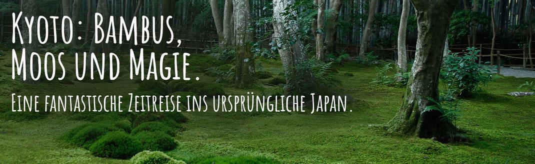 Bambus und Gio-ji Tempel in Kyoto, Japan