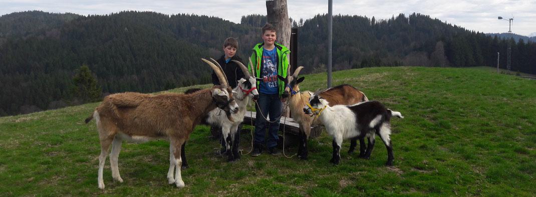 Jungs mit Nestor, Lucky, Tama und Lucy am Gipfelkreuz