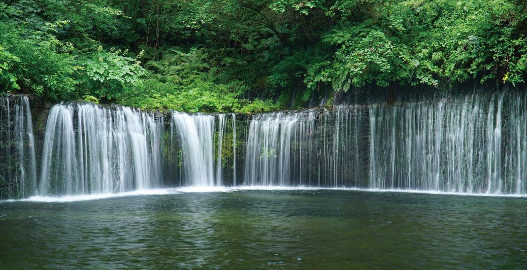 富士山の伏流水がつくる景観「白糸の滝」
