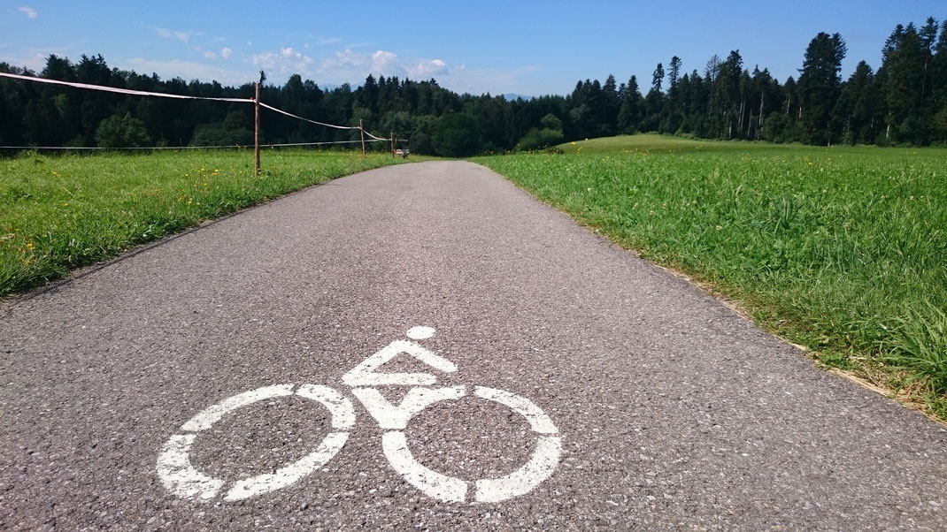 Radweg 6