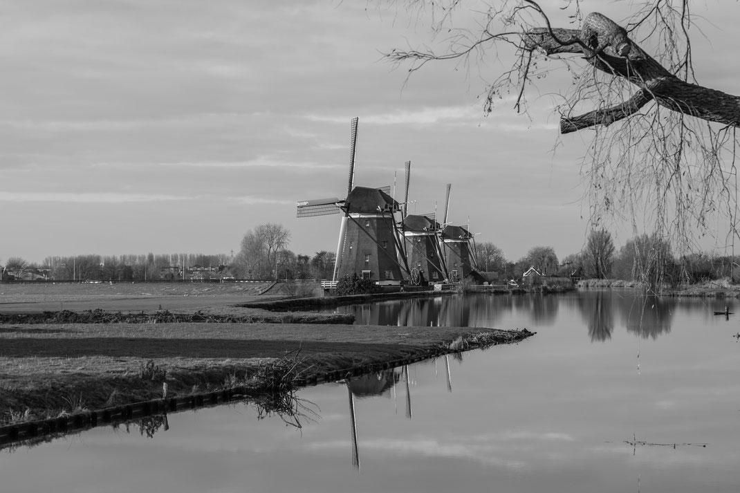 Windmills at Driemanspolder - Leidschendam - The Netherlands