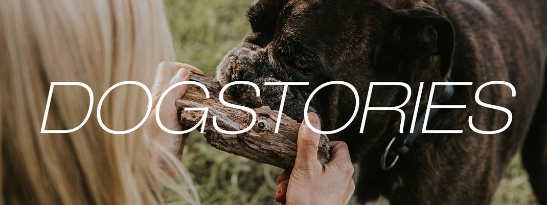 Hundefotografie Berlin authentische Fotos von Mensch und Hund Tierfotografin Brandenburg Content Creator Storyteller