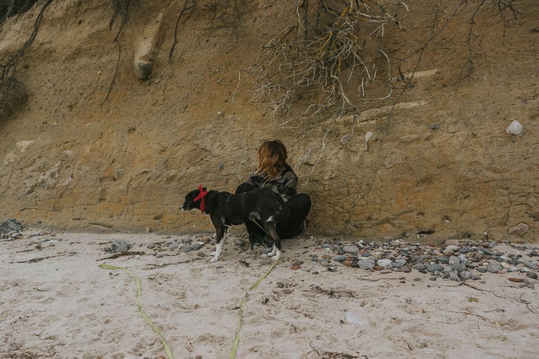 Urlaub mit Hund an der Ostsee Hundestrand Nienhagen Wanderung Ostseebad Nienhagen bei Rostock Wildcamping