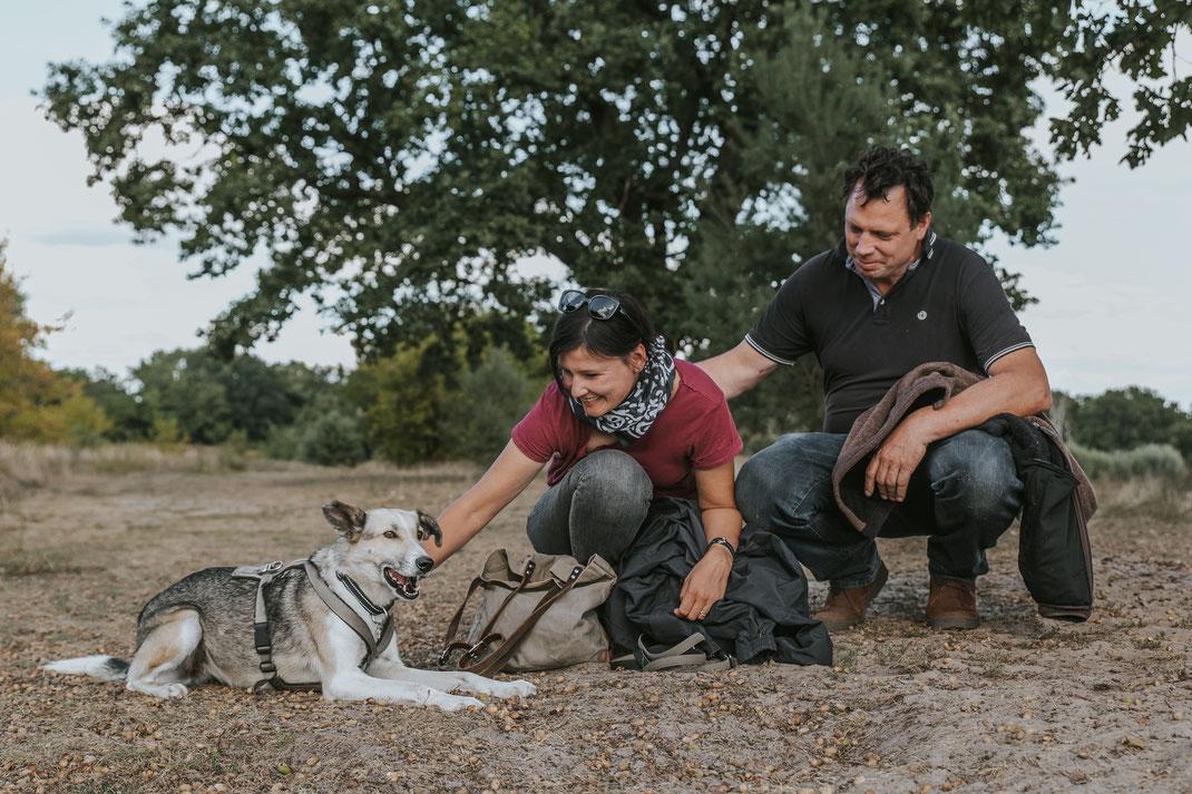 Portraitshooting mit Hund Streunertreffen im Erpetal des Tierschutzverein Streunerhilfe Bulgarien e.V. Hundefotografie Berlin Tierfotografie Fotografin Erfahrungsbericht Auslandstierschutz Hunde aus dem Ausland Bulgarien