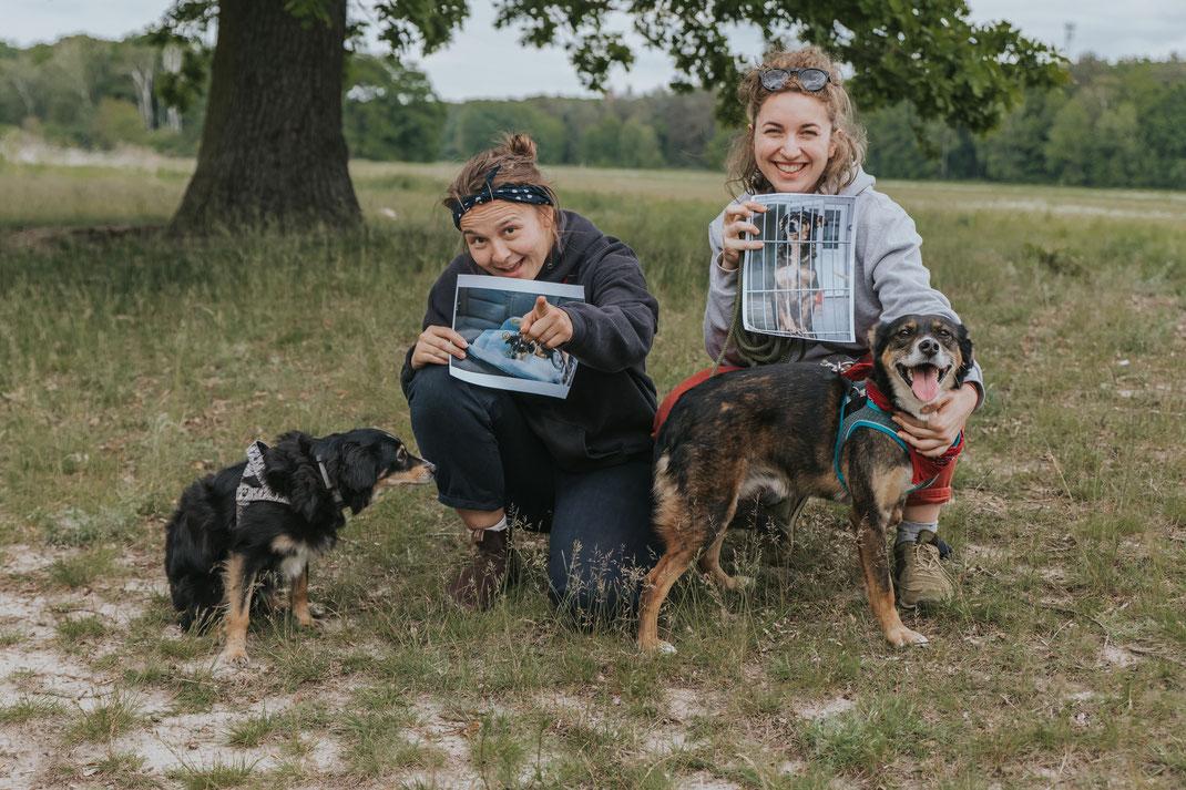Erpetal Berlin Hoppegarten Gruppenbild Streunerhilfe Bulgarien e.V. Hundefotografie Berlin Tierfotograf Brandenburg authentische Reportage
