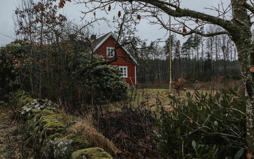 Ferienhaus Blick von der Zufahrt skane suedschweden nadine kunath reise fotografie travelphotographer reisefotografin berlin