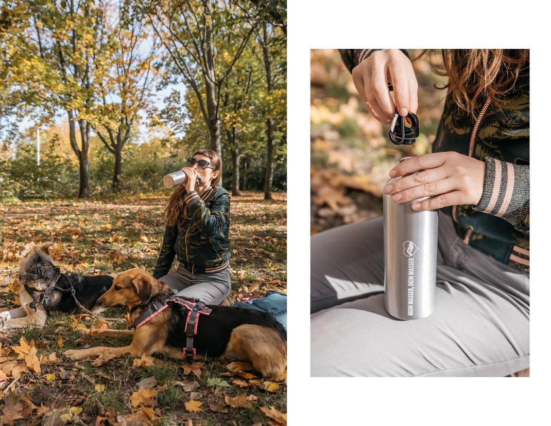 Produktfotografie Wasserflasche für Hunde Streunerhilfe Bulgarien e.V. Social Media Content Creation Berlin Brandenburg Ehrenamtlich Hundefotografie authentische Fotos mit Hund