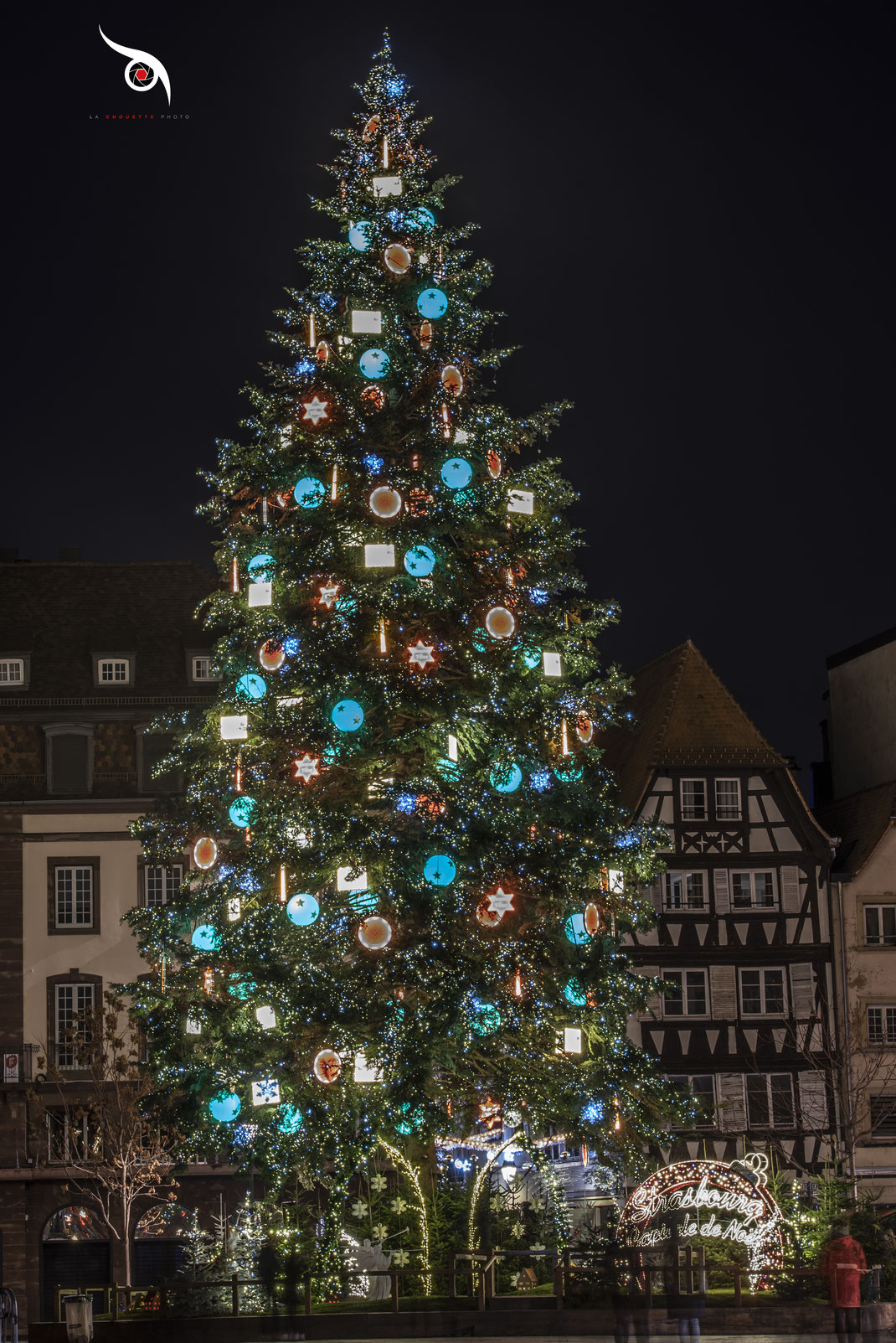 Sapin de Noel de Strasbourg