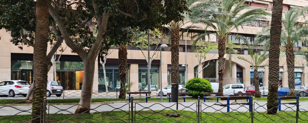 Si busca Local comercial junto al puerto comercial y deportivo de Alicante una Oficina a pie de calle en la mejor zona empresarial del centro de Alicante rodeado de zonas ajardinadas, espacios abiertos, Hoteles, Estación AVE Renfe, excelentes conexiones