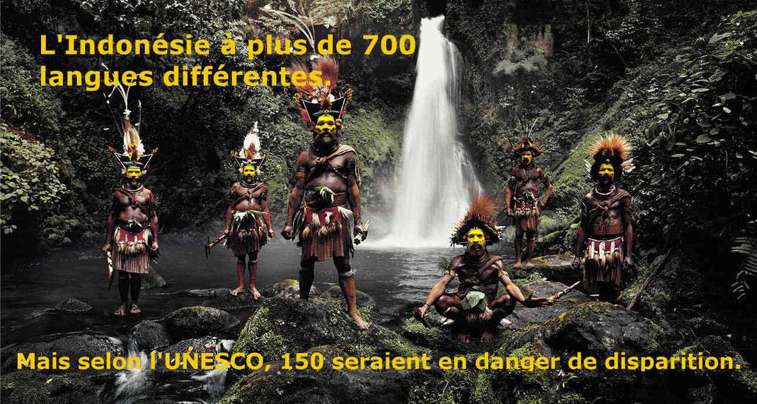 L'Indonésie compte plus de 700 langues et dialectes différents. Mais selon l'UNESCO, 150 sont en danger de disparition.