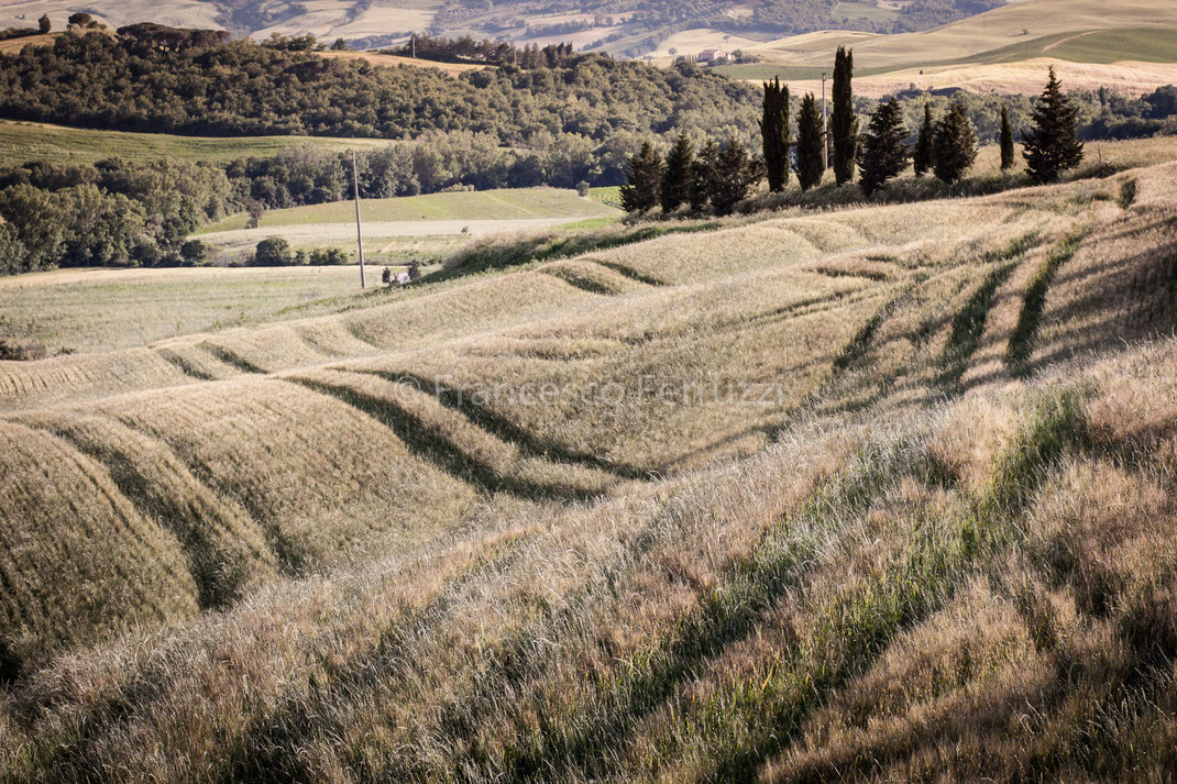 Toscana: Val d'Orcia [Tuscany: Val d'Orcia]