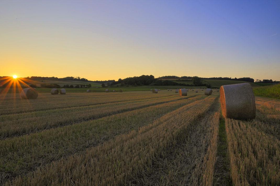 Die Ernte ist eingefahren. Septemberabend bei Töding (Foto: Joachim Aschenbrenner,2021)
