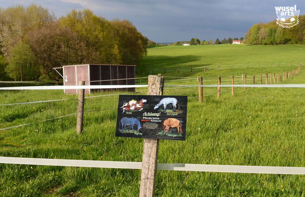 """Aluverbund-Weideschild """"Pferde bitte nicht füttern!"""" am Zaunpfosten befestigt"""
