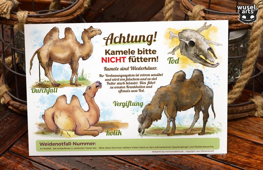 Kamele nicht füttern! Schild