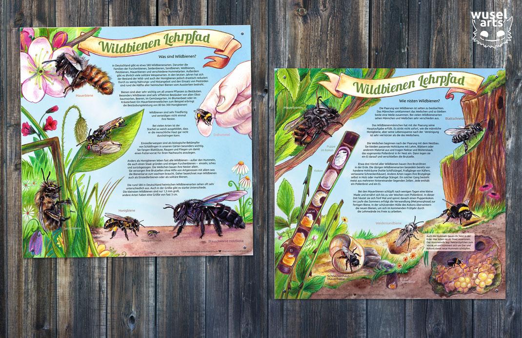 Wildbienen Schild, Was sind Wildbienen?, Lerntafel für Kinder zu Bienen, Wie nisten Wildbienen?, Bienenschild