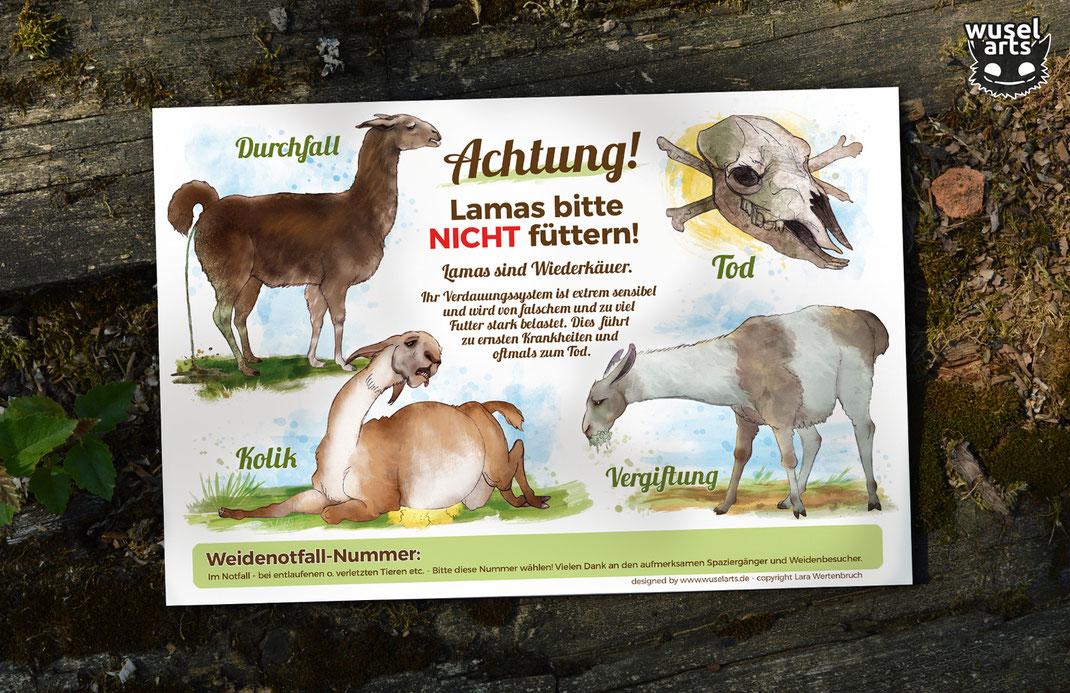 Weideschild Lamas, das Schild weist auf die Folgen falschen Fütterns beim Lama hin, Vergiftung, Durchfall, Kolik, Tod