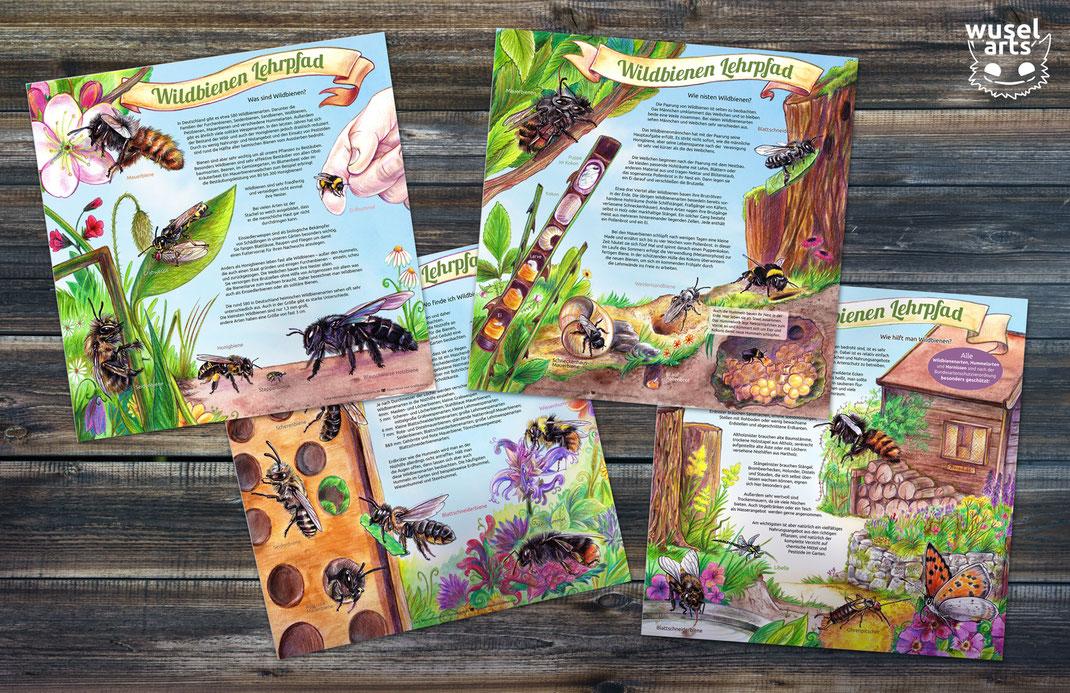 Lehrpfad Wildbienen, wilde Bienen, Schilder, Wo finde ich Wildbienen, Aquarell Illustration Biene, Schild