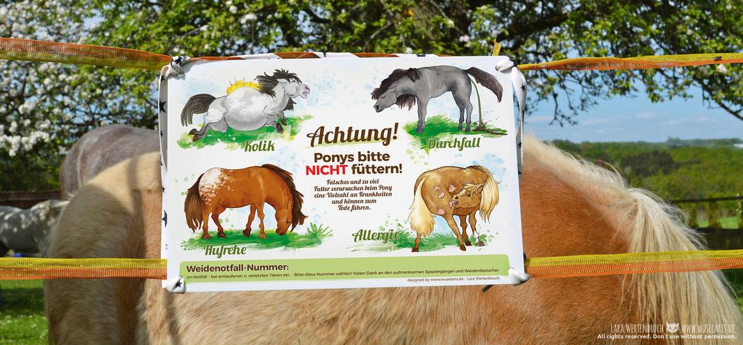 Ponys bitte nicht füttern Schild