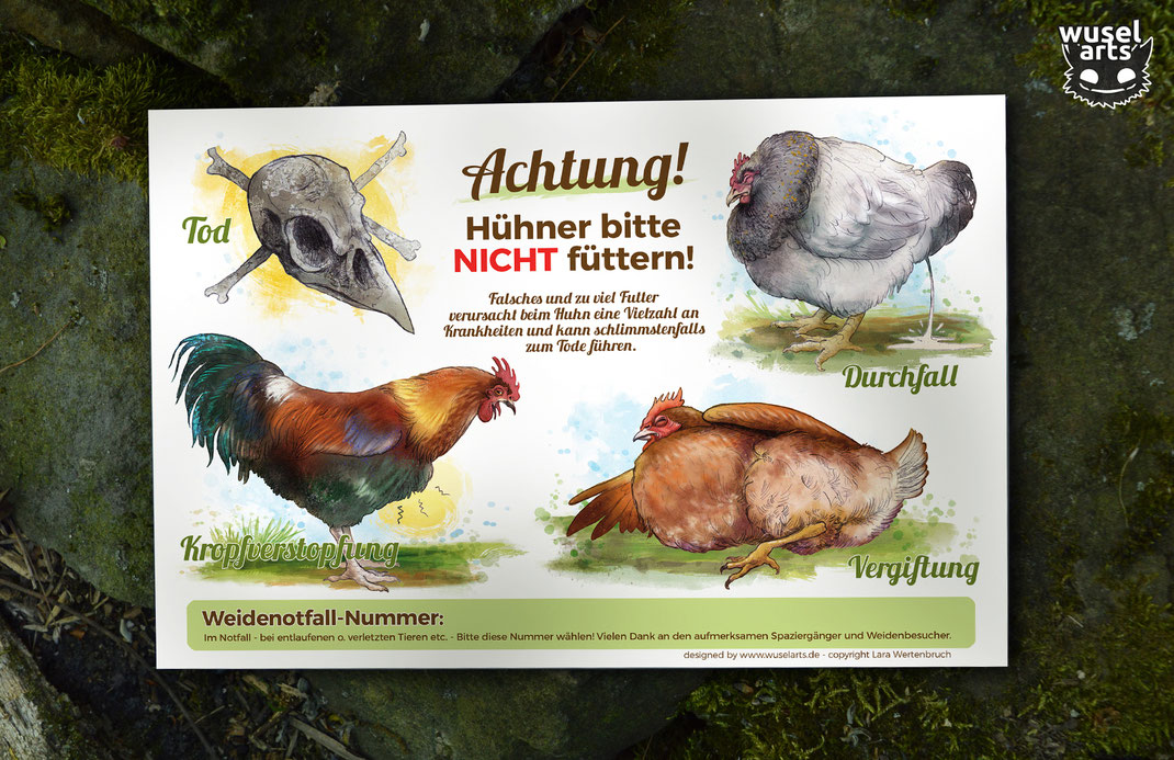 Hühner bitte nicht füttern Schild weis auf die Folgen falschen fütterns beim Huhn hin, Illustration krankes Huhn Vergiftung, Durchfall, Kropfverstopfung