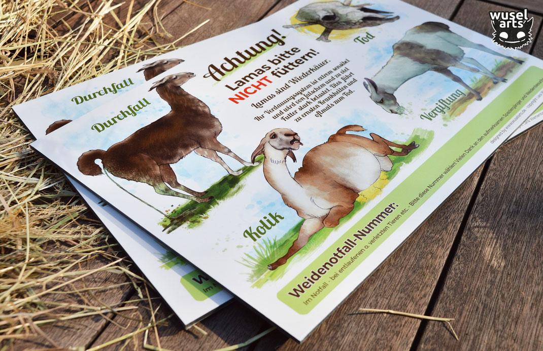 Lamas bitte nicht füttern Schild