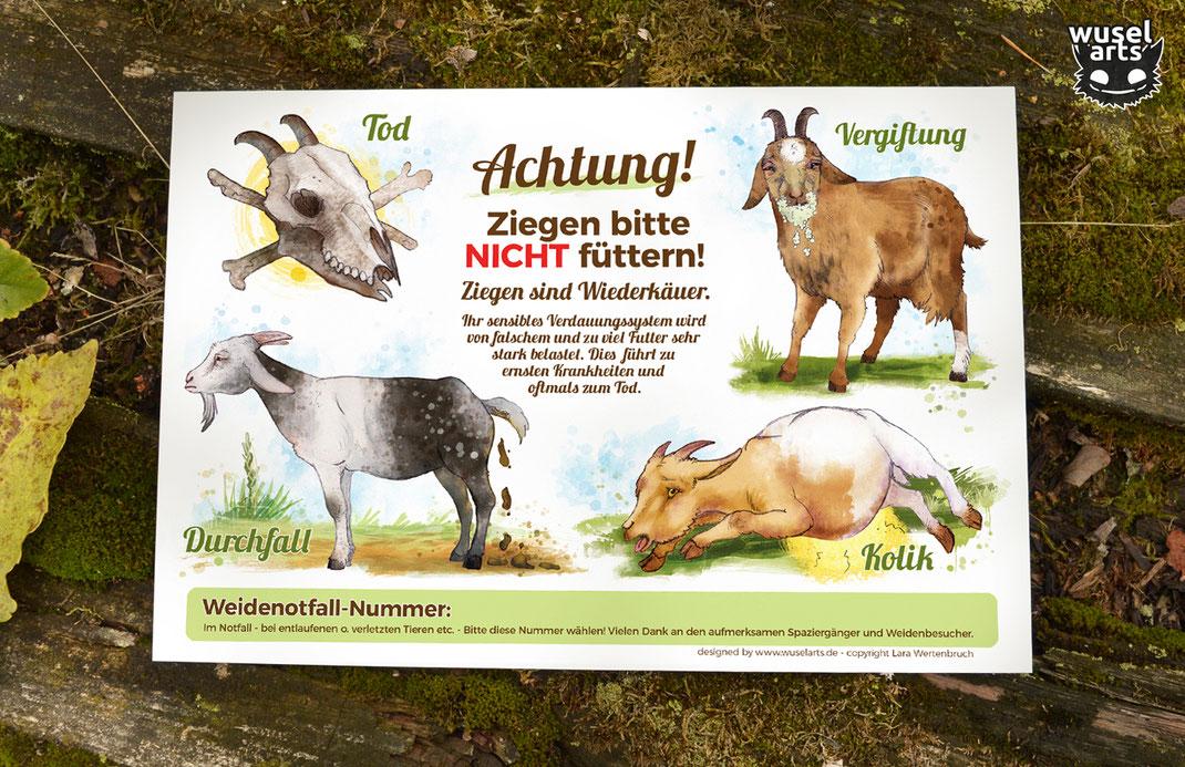 """Schild """"Ziegen bitte nicht füttern!"""", Weideschild Ziege warnt vor den Folgen falschen Fütterns Vergiftung, Kolik, Durchfall, Tod"""
