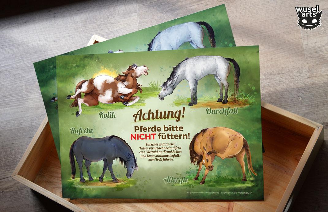 Pferde bitte nicht füttern Schild Grün