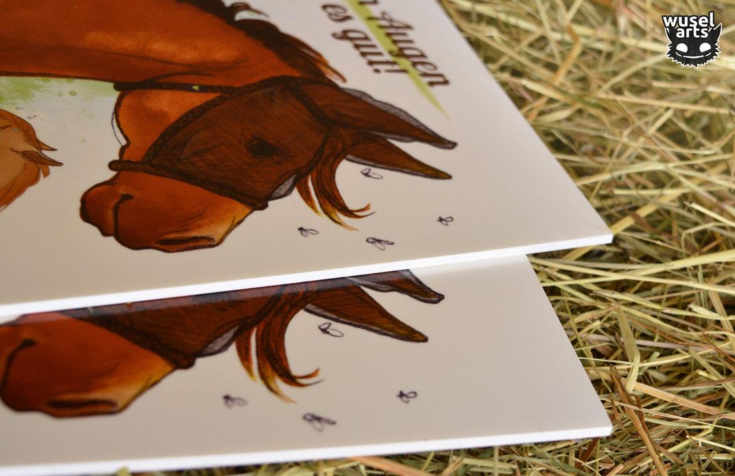 Fliegenmaske fürs Pferd, Schild Pferdeweide