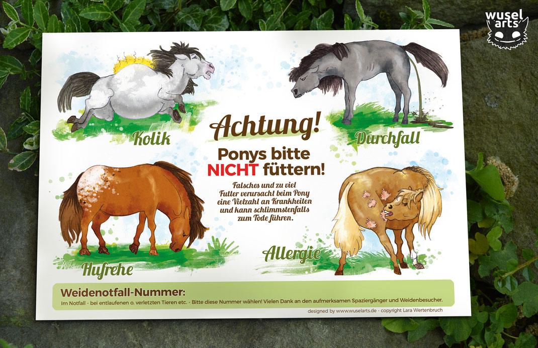 Weideschild Pony - Ponys bitte nicht füttern