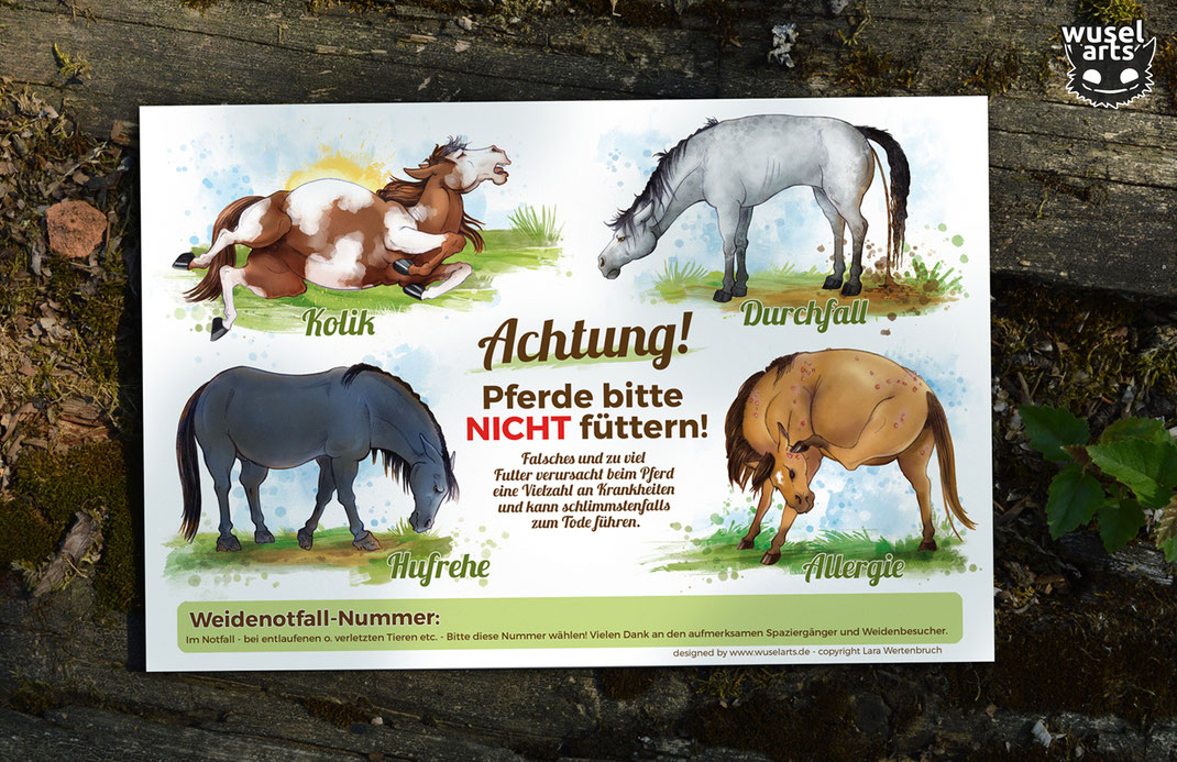 """Hufrehe, Kolik, Durchfall oder Allergie sind Folgen von falschem Futter beim Pferd - """"Pferde bitte nicht füttern!"""" Schild mit Notfallnummer warnt an der Weide"""